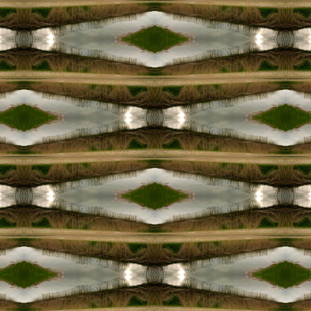 """""""Terre in Vista"""", testo critico di Giorgio Baldo, 2014, ita"""